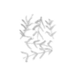 http://www.jasonlyart.com/files/gimgs/th-69_row26_14_v2.jpg